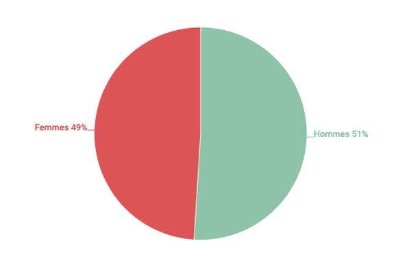 graphique représentant le profil des publics de la Bpi