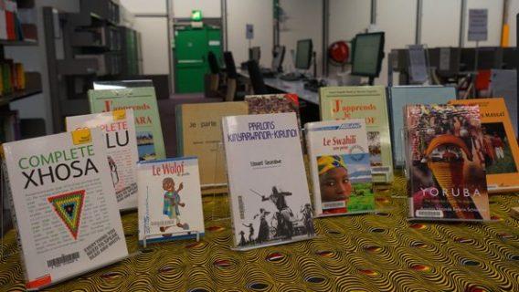 Ouvrages d'apprentissage des langues africaines