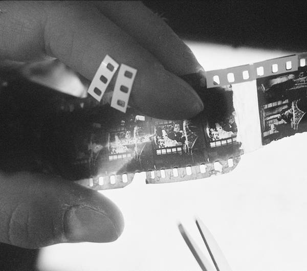 photo du film Archipel nitrate