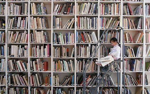 enfant sur une échelle devant un rayonnage de bibliothèque