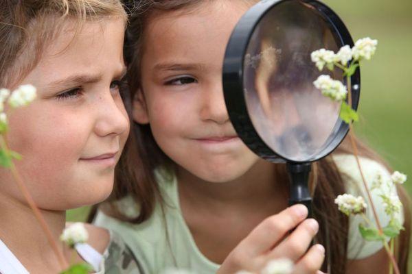 petites filles entourées de fleurs regaradant à travers une loupe