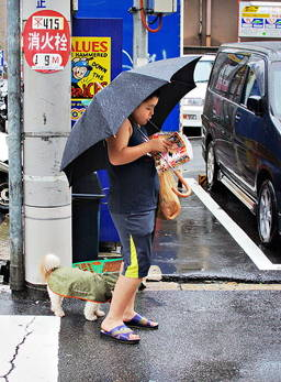 Garçon qui lit un manga sous un parapluie dans la rue