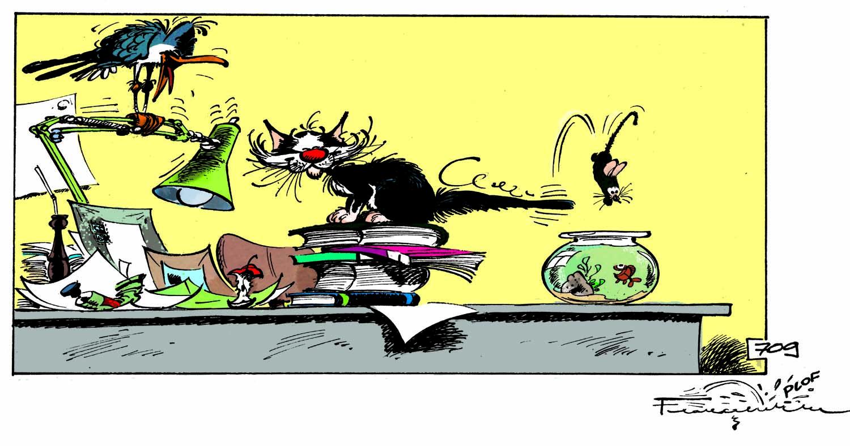 le chat, la mouette, la souris et le poisson rouge de Gaston