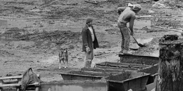 Deux hommes et un chien sur une maison