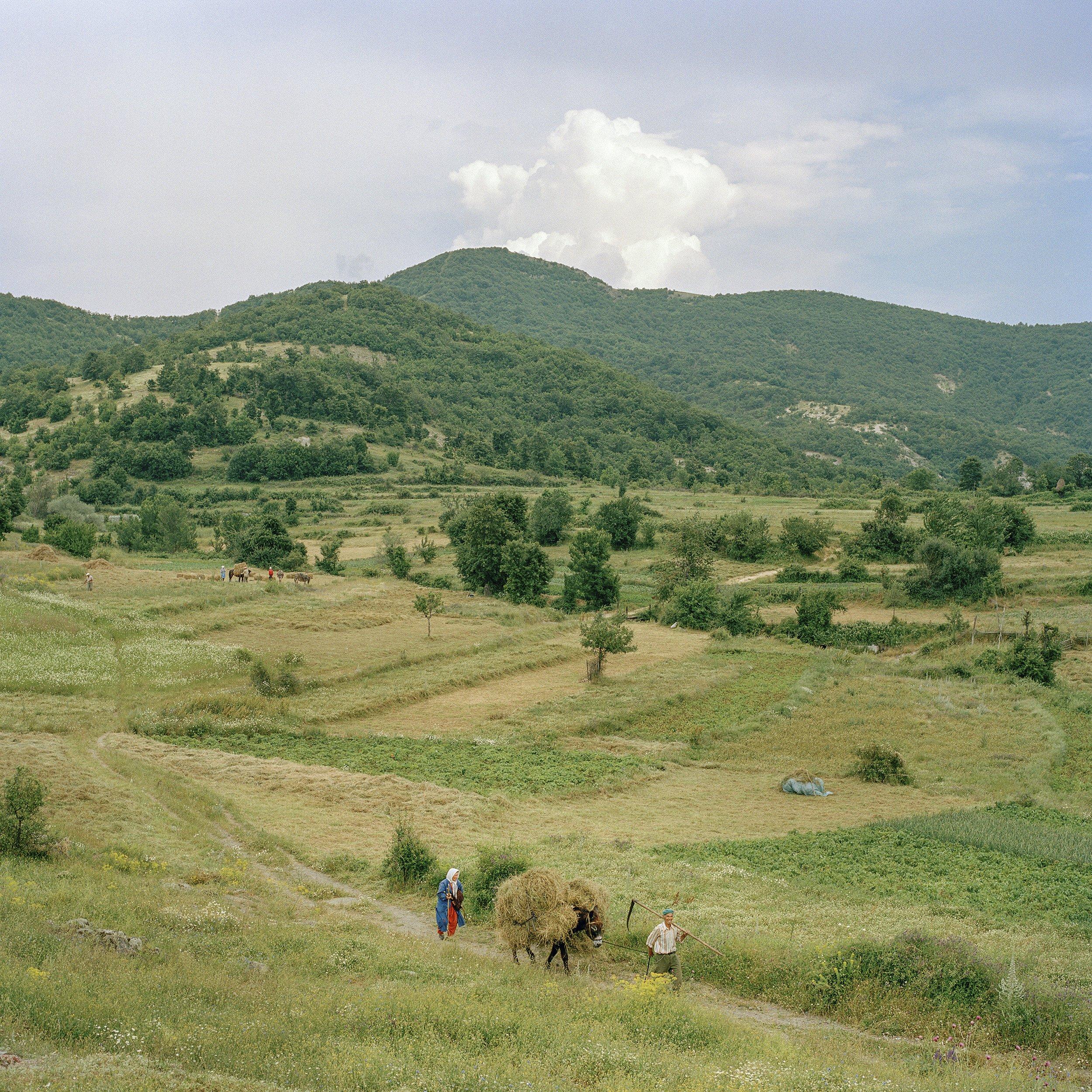 Photo de Valerio Vincenzo : une prairie verte et vallonnée entre Grèce et Bulgarie
