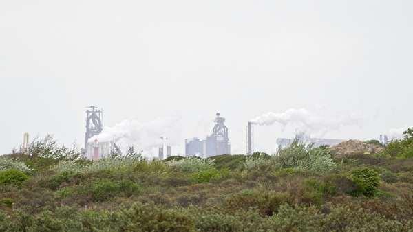 Des plantes poussent sur un terrain vague, devant une usine crachant ses fumées